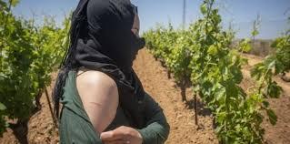 """فضيحة """"عبيد الجنس"""" المغربيات.. وزارة الشغل كتغطي الشمس بالغربال!"""