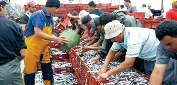 اتفاق الصيد البحري مع الاتحاد الأوروبي.. شنو رابح المغرب؟ (صور)