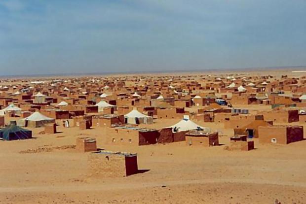 الحرارة وصلات 56 درجة.. قيادات البوليساريو في المنتجعات وسكان المخيمات كيموتو بالصهد