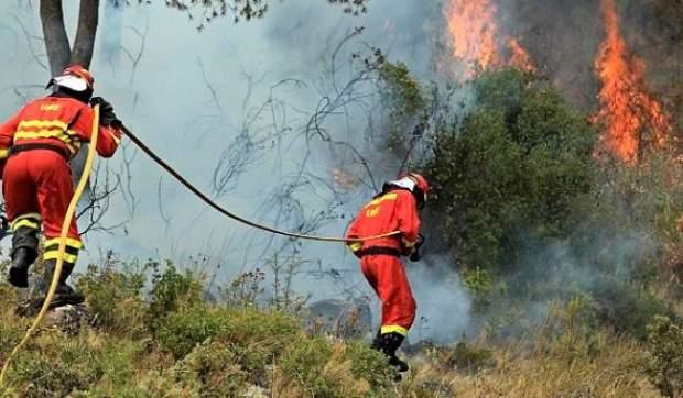 في ثمانية أشهر.. الحرائق تلتهم آلاف الهكتارت من غابات إسبانيا