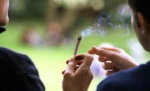 عطات النموذج بفاس.. برلمانية تسائل لفتيت عن انتشار المخدرات