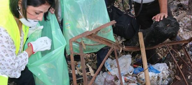 لاحتواء الكوليرا.. الجزائريون ينخرطون في أكبر حملة للنظافة