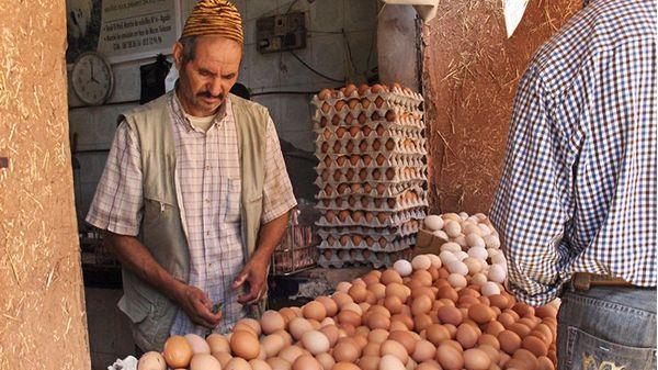 في عام واحد.. المغاربة استهلكوا 5.5 مليار بيضة!