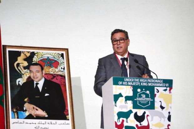 مراكش.. أخنوش يعلن قرب إصدار قانون جديد حول الأدوية البيطرية
