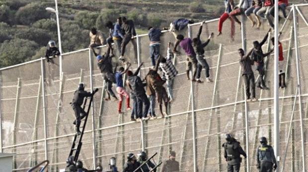 بعد محاولتهم اقتحام سياج مليلية.. المغرب يرحل 141 مهاجرا