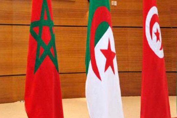 بعد المبادرة الملكية.. تونس تقترح التوسط بين المغرب والجزائر