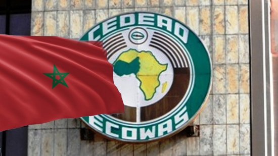 دير ما دار جارك.. الجزائر تحاول منافسة المغرب في منطقة غرب إفريقيا