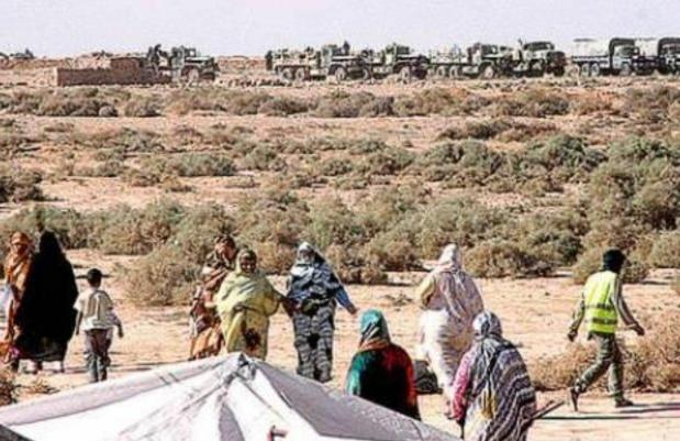 أكثر من 40 سنة في ظروف صعبة.. دعوات إلىإجراء تحقيق دولي حول انتهاكات حقوق الإنسان في مخيمات تندوف