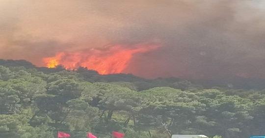"""تسبب في إتلاف 40 هكتارا من الغطاء الغابوي.. حريق مهول في غابة """"واد راس"""" في تطوان (فيديو)"""