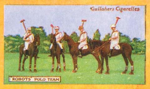 polo-1