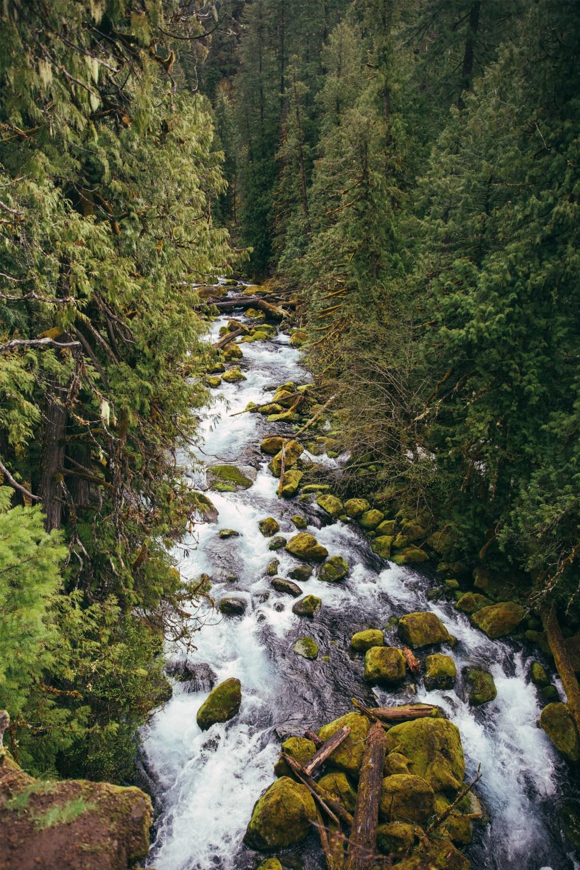 En route Tamolitch Falls