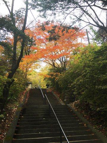 登別温泉ターミナル紅葉