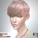 Short Hair With Heavy Bangs (for Female)
