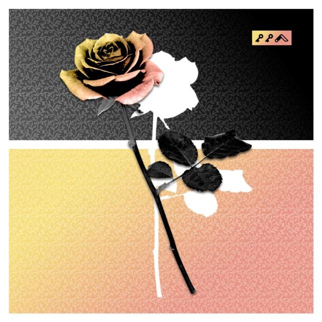 """""""ROSES ARE DEAD"""" design by kikicutt"""