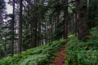 Prilep Nationalpark