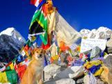 Perro Rescatado llega al Everest