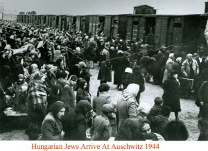 Hungarian Jews arriving at Auschwitz 1944