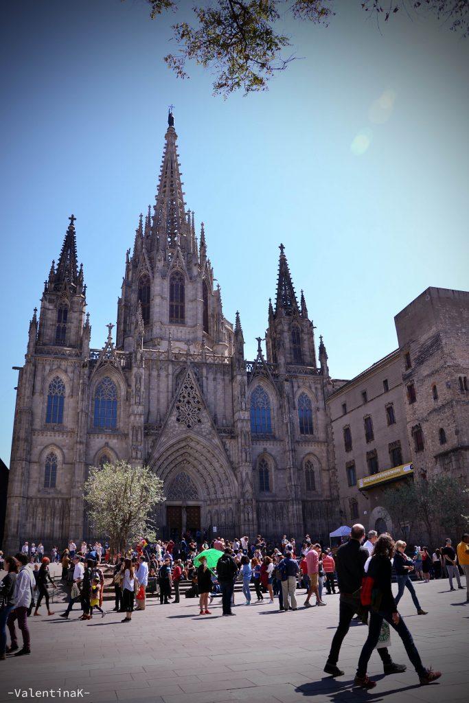 cattedrale gotica di barcellona