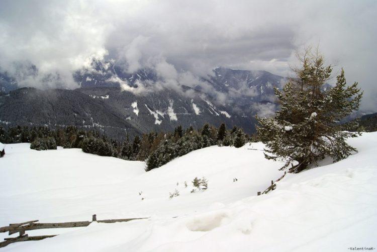 neve, abeti innevati, nuvole basse, l'atmosfera invernale alla plose di bressanone