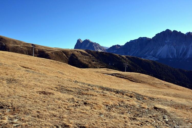 tre splendide escursioni sulla plose: la magia dell'inverno sulla plose anche senza neve