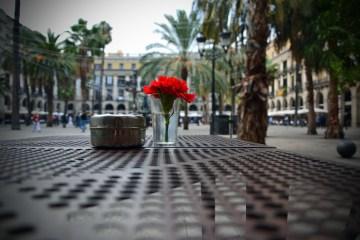 dove mangiare a barcellona: fiore rosso e tavolini a plaza reial