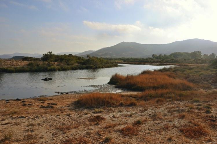 sardegna del sud est spiagge: lo stagno dietro a cala murtas