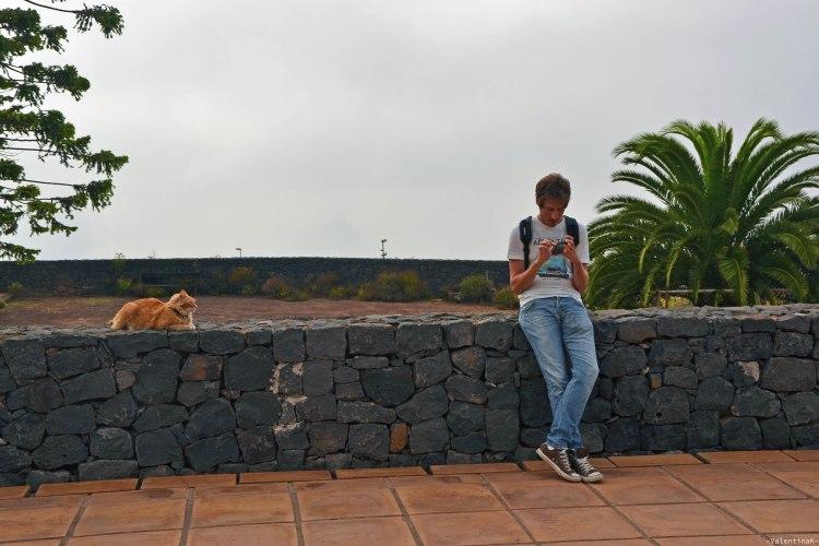 mattia e un gatto rosso canario che se ne fregano altamente del mio anno di blog
