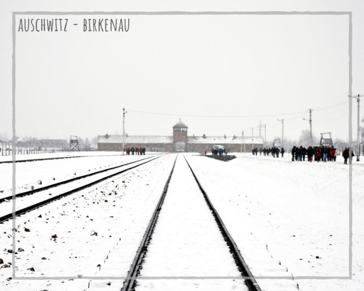 cracovia, appunti sparsi dal mio diario di viaggio: il campo di concentramento di auschwitz-birkenau, sotto la neve