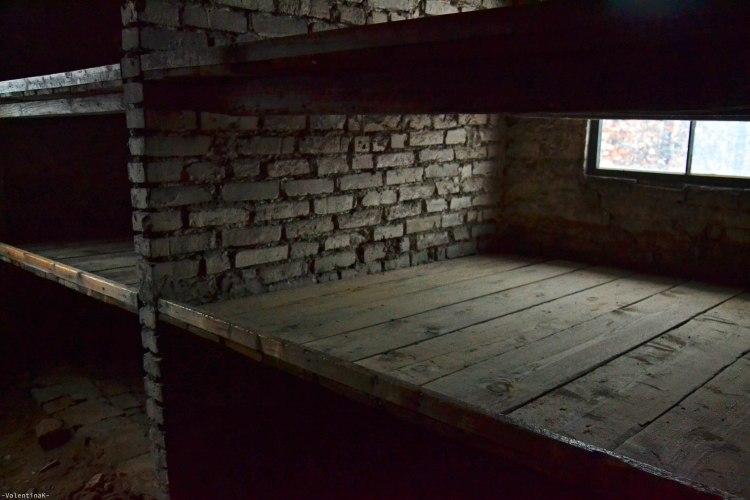 auschwitz-birkenau 27 gennaio: posti letto all'interno delle baracche a Birkenau