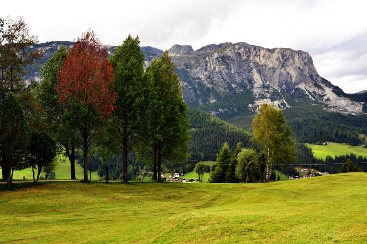 Cosa fare in Val Badia quando piove: i prati di oies con alberi