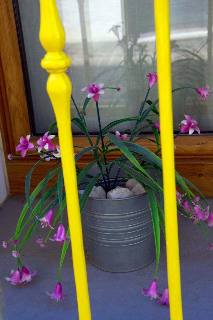 dettagli di vasi fioriti e sbarre gialle