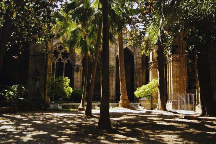 luce, ombra e magia al chiostro delle oche della cattedrale di barcelona