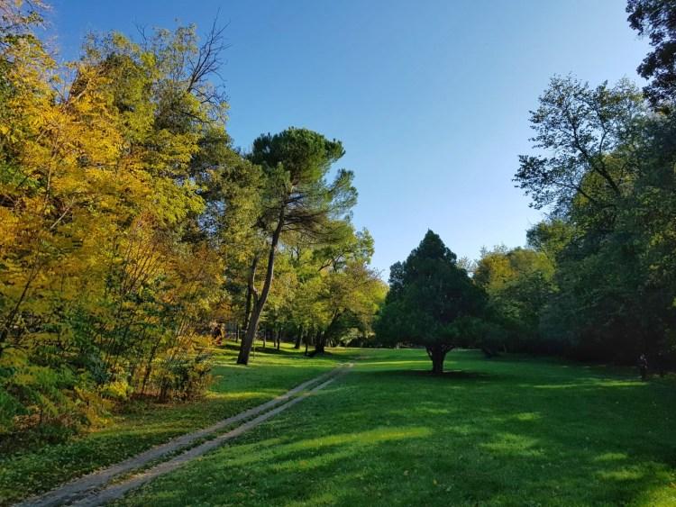 sentiero nel parco talon