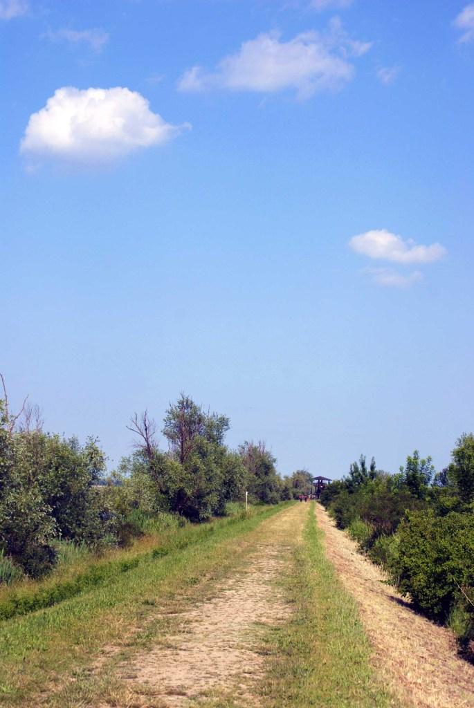 In bicicletta intorno alla Valle Santa di Argenta: il sentiero verso la torretta d'avvistamento in valle santa di argenta