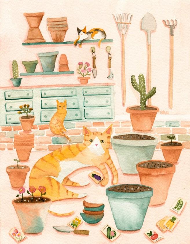 cats potting room