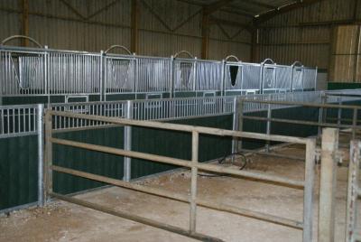 loddon stables (40)