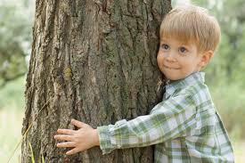 Health benefits of tree hugging