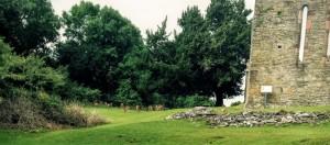 KillarneyGuide.ie Innisfallen Deer