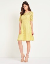 True Decadence @ Next €67 - Lace Scallop Skater Dress http://ie.nextdirect.com/en/gl61380s4#L46478