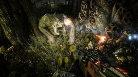 2k_evolve_paxeast_screenshot_4_wildlife_62258_1