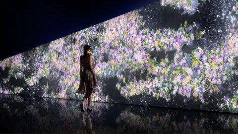 Infinity_of_Flowers