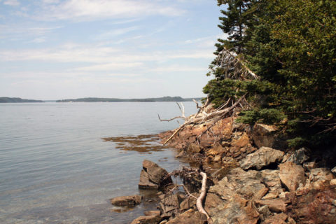 Hog Island, Jones Cove, Flanders Bay, Gouldsboro, Maine.