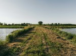 Lucas County Iowa Land For Sale (121)