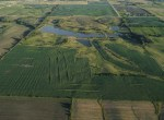 Lucas County Iowa Land For Sale (21)