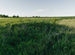Lucas County Iowa Land For Sale (66)