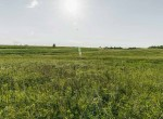 Lucas County Iowa Land For Sale (70)