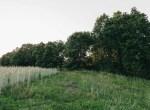 Land for Sale Decatur County Iowa-38