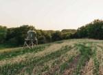 Land for Sale Decatur County Iowa-43