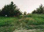 Land for Sale Decatur County Iowa-49