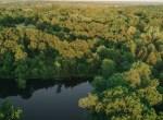 Land for Sale Decatur County Iowa-58